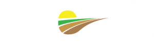 Picus Logo